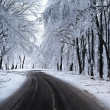 winter weg — Stockfoto