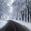 Stockfoto: Winter Road