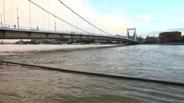 Flood River — Stock Video