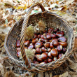Chestnut in a wicker basket — Stock Photo