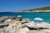 Pobřeží krajina, porto selvaggio, itálie — Stock fotografie