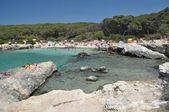 пляж пейзаж, порто selvaggio, апулия, италия — Стоковое фото