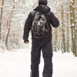 Stock Photo: Mwalking in winter forest