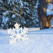 Stock Photo: Decorative snowflake on snow