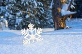 Dekorativní vločku na sněhu — Stock fotografie