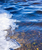 River clear water in Spring — Stock Photo