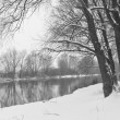 Winter river and trees in winter season — Stock Photo #34829647