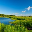 River and blue sky — Stock Photo #37226425