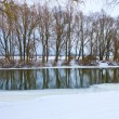 Stock Photo: Frozen river and trees in winter season