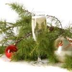 Christmas composition — Stock Photo #1717785