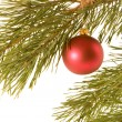 Christmas ball on fir banch — Stock Photo #2947467