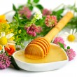 Flowers and honey — Stock Photo