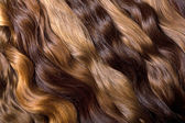 Natural human hair — Stock Photo