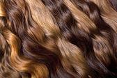 Natural human hair — Stock Photo