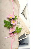 Dog rose flowers with the retro letters and photos — Stock Photo