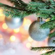 Christmas decoration — Stock Photo #16194359