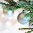 Christmas decoration — Stock Photo #16501613