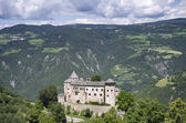 South Tyrol Landscape with Castle (Bolzano) — Stock Photo
