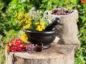Hierbas curativas en el mortero, la medicina herbaria — Foto de Stock