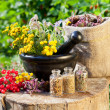 Healing herbs in mortar and in sack, herbal medicine - Stock Photo