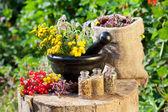 Healing herbs in mortar and in sack, herbal medicine — Stock Photo