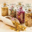 Healing herbs in glass bottles and wooden scoop, herbal medicine — Stock Photo