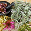 Healing herbs on wooden table, mortar and pestle, herbal medicin — Stock Photo