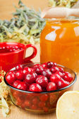 Cranberries, jar with honey, fruit tea cup, healing herbs and le — Stock Photo