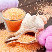 Body care accessories: sea salt, towel, bath sponge and shell — Стоковое фото