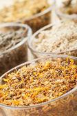 Healing herbs in glass cups, herbal medicine — Foto de Stock