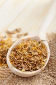 Léčivé byliny v dřevěnou lžící na stole — Stock fotografie