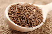 Cumin seeds in wooden spoon — Stock Photo