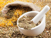 Mortar, pestle and bag of healing herbs, herbal medicine — Stock Photo