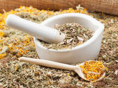 Mortar, pestle and healing herbs, herbal medicine — Stock Photo