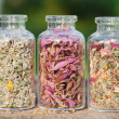Healing herbs in glass bottles, herbal medicine — Stock Photo #25560667