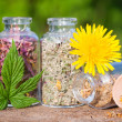 Glass bottles with healing herbs on wooden board in sunset sunli — Stock Photo