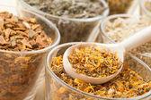 Hierbas curativas en copas de cristal y la cuchara de madera, medicina herbaria — Foto de Stock