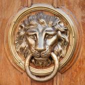 Door knocker, handle - lion head — Stock Photo