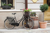 Old bicycle carrying flowers — Stock Photo