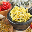 Medicinal herbs on table, herbal medicine — Stock Photo