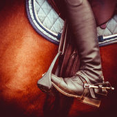 Jockey riding boot, horses saddle and stirrup — Stock Photo