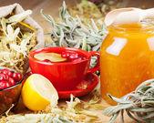 Red cranberries, glass jar with honey, fruit tea cup, healing he — Zdjęcie stockowe