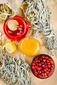 Red cranberries, jar with honey, fruit tea cup, healing herbs an — Stock Photo