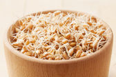 Wheat sprouts in bowl — Stock Photo