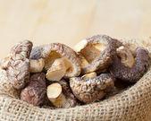 Shiitake mushroom in hessian bag — Stock Photo