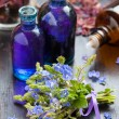 Glass bottle of essential oil and blue healing flowers — Stock Photo #45942359