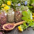 Healing herbs in glass bottles, healthy plants and wooden spoon — Stock Photo #45942365