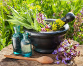 Mortar with healing herbs and sage — Foto Stock
