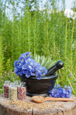 Mortar with blue cornflowers and sage, herbal medicine — Stock Photo