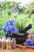 Mortar with blue cornflowers and sage on windowsil — Stock Photo
